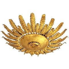 Sunburst Sunflower Ceiling Light Fixture or Wall Sconce in Wrought Gilt Iron