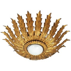 Sunburst Wrought Iron Light Fixture with Scalloped Leaves, France, 1950s
