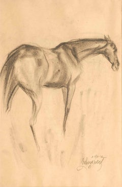 Early Horses in charcoal on paper with Energy, aggression, power of modern times