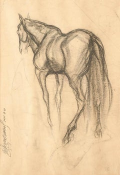 """Early Horses V, Drawing, Charcoal on Paper, Black by Indian Artist """"In Stock"""""""