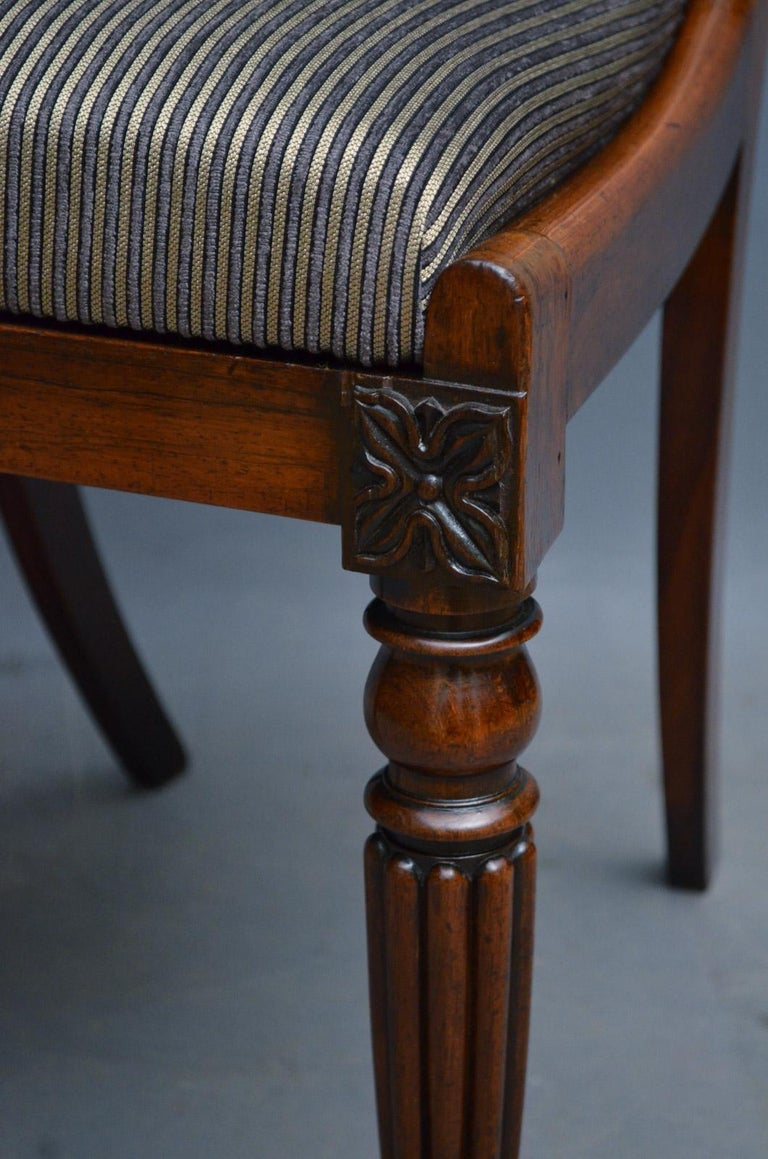 Superb Set of Six William IV Rosewood Dining Chairs For Sale 2