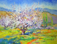 Blossom of Apricot Tree, Spring Landscape