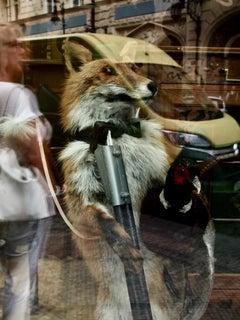 Clever Fox, Prague