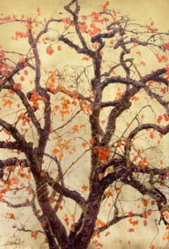 Autumn Blaze, Contemporary Realism, Resin, Nature, Tree, Orange