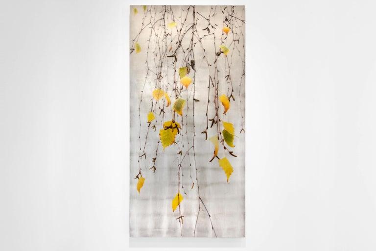 Autumn Echo - Contemporary Mixed Media Art by Susan Goldsmith