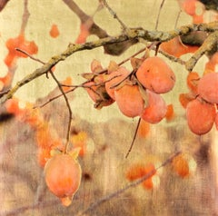 Jove's Fire, Persimmon Tree, Orange, Gold Leaf, Resin