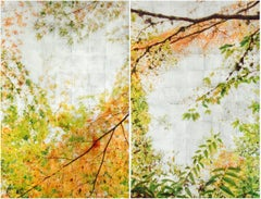 Autumn Sampling I (Diptych), Contemporary Realism, Nature, Resin, Trees