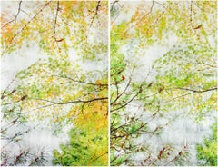 Autumn Sampling II (Diptych), Contemporary Realism, Resin, Nature, Trees