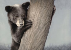 """Yearling Black Bear,"" Oil painting"