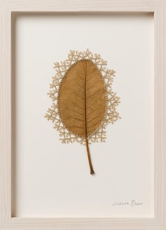 Adornment XVI -embroidery flora dried magnolia leaf on paper