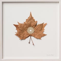 Centered IX - intricate embroidery dried platanus leaves on paper nature art