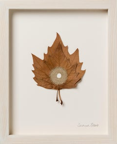 Centered VIII - embroidery flora dried platanus leaves on paper