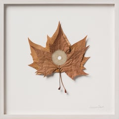 Centered X - intricate embroidery dried platanus leaves on paper - nature art