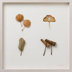 Collection- nature inspired embroidered real leaves on paper