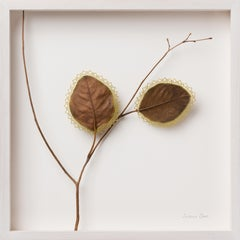 Dawn  - Intricate contemporary crochet leaf nature art