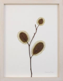 Growing - intricate contemporary embroidered leaf nature art