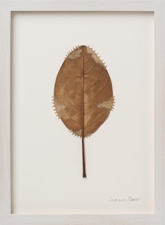 Restoration X  - Intricate contemporary embroidered leaf nature art