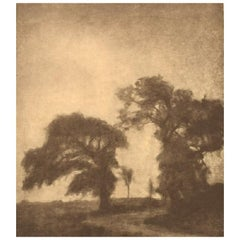Svend Hammershøi Heliogravure with Motif of Trees at Vordingborg, Denmark