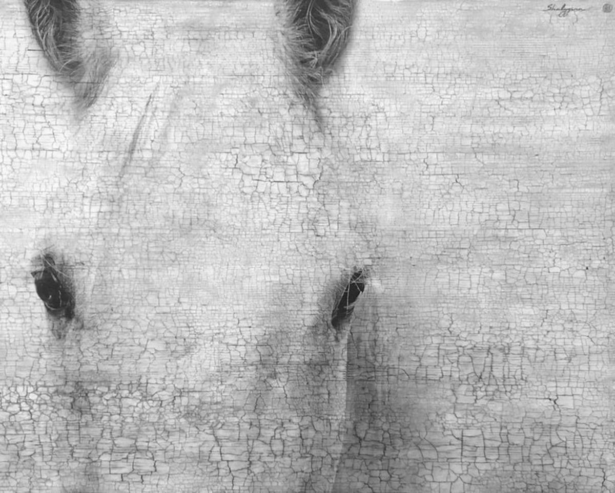 "White Black Horse Closeup Contemporary Modern Hyperrealistic Mixed Media 52""x65"""