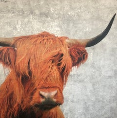 Orange Gray Highland Cattle Cow Hyperrealistic Textural Mixed Media  62x63