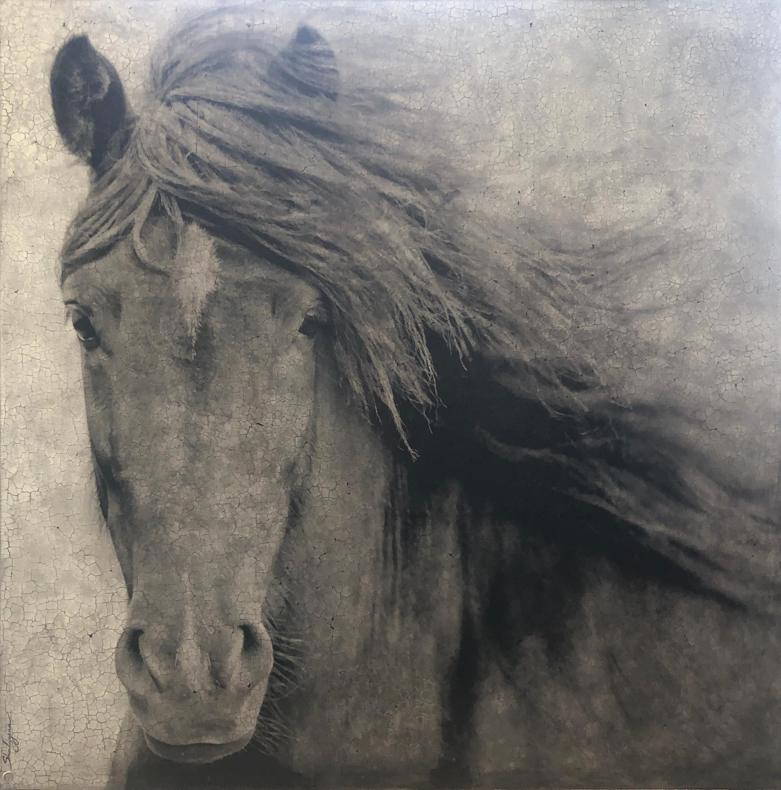"Black Gray Large Horse Closeup Contemporary Hyperrealistic Mixed Media 72""X72"""