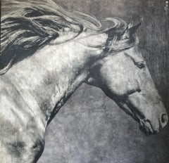 Oversized Square Large Contemporary Black Gray Horse Close-up Mixed Media 72x72