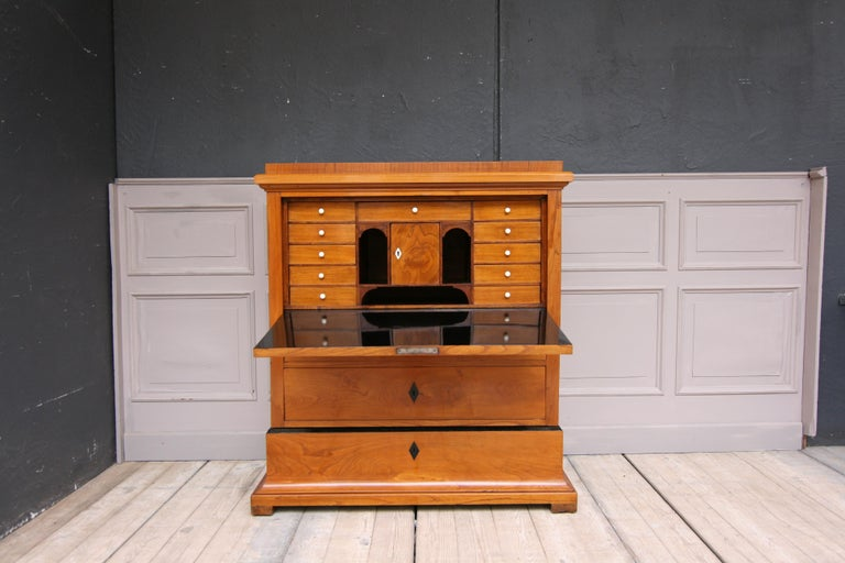 Swedish Biedermeier Secretary, Cherrywood Veneer, French Polished For Sale 4
