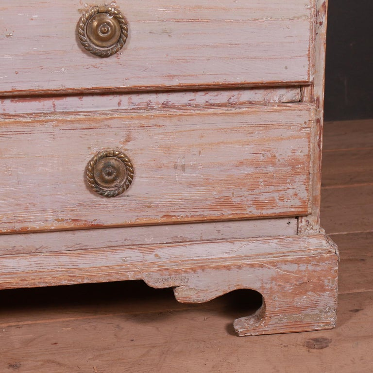 Pine Swedish Chest of Drawers For Sale