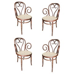 Sweetheart Bentwood Cane Bistro Cafe Armchairs with Wicker Seats, Thonet, Set of