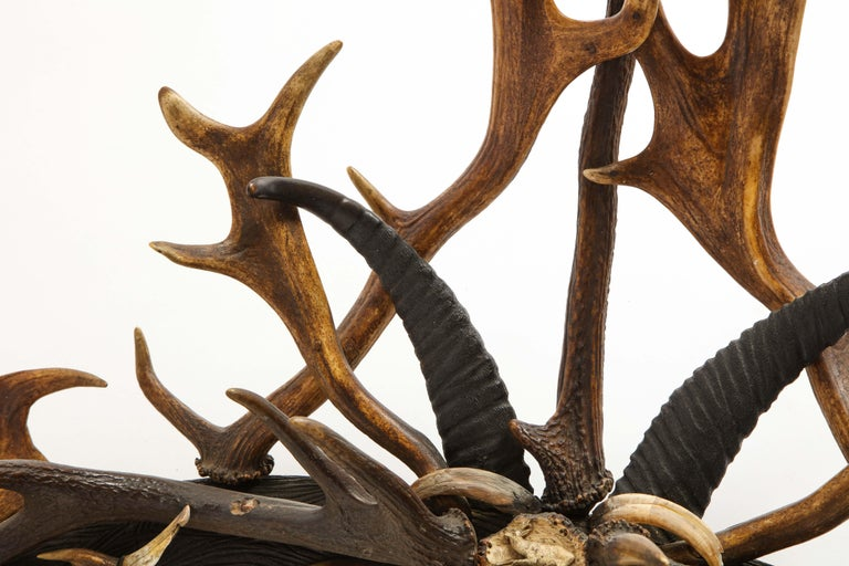 Swiss 'Black Forest' Antler and Boar Tusk-Mounted Mirror, Early 20th Century For Sale 12