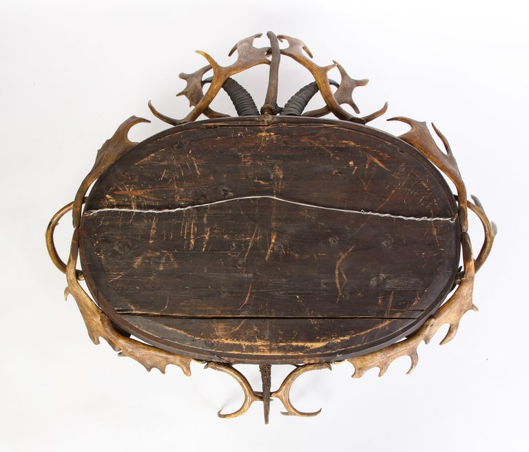 Swiss 'Black Forest' Antler and Boar Tusk-Mounted Mirror, Early 20th Century For Sale 8