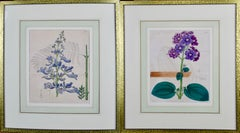 A Pair of 19th C. Framed Hand Colored Edwards' Botanical Engravings of Flowers