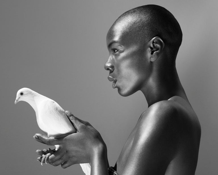 Sylvie Blum Black and White Photograph - The pigeon, 21st century, contemporary, photography