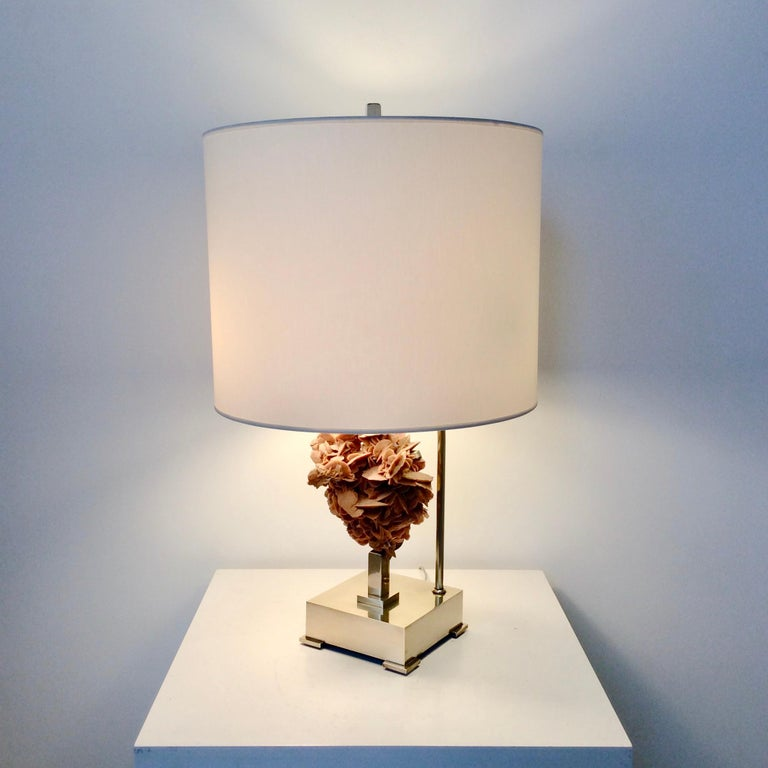 Polished Table Lamp, Desert Rose and Brass, by Willy Daro, circa 1970, Belgium For Sale