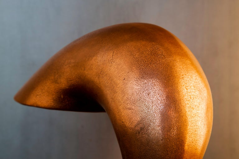 Contemporary Table Lamp, Eliza's Big Question, Burnished Copper, Jordan Mozer USA, 2002 For Sale
