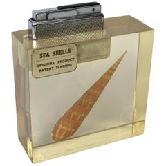 Table Lighter in Lucite Resin with a Sea Shell Inside, 1970s