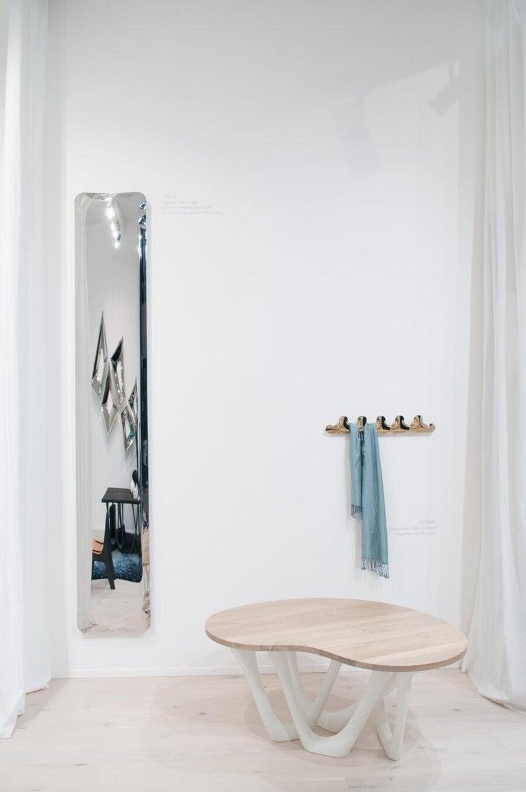 Polish Tafla Mirror IQ Monumental Mirror by Zieta Prozessdesign in Stainless Steel For Sale