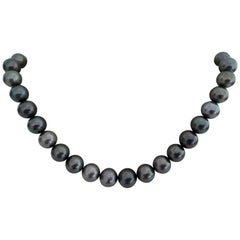 Tahiti Pearls Fine Quality, Round, Natural Color and High Luster