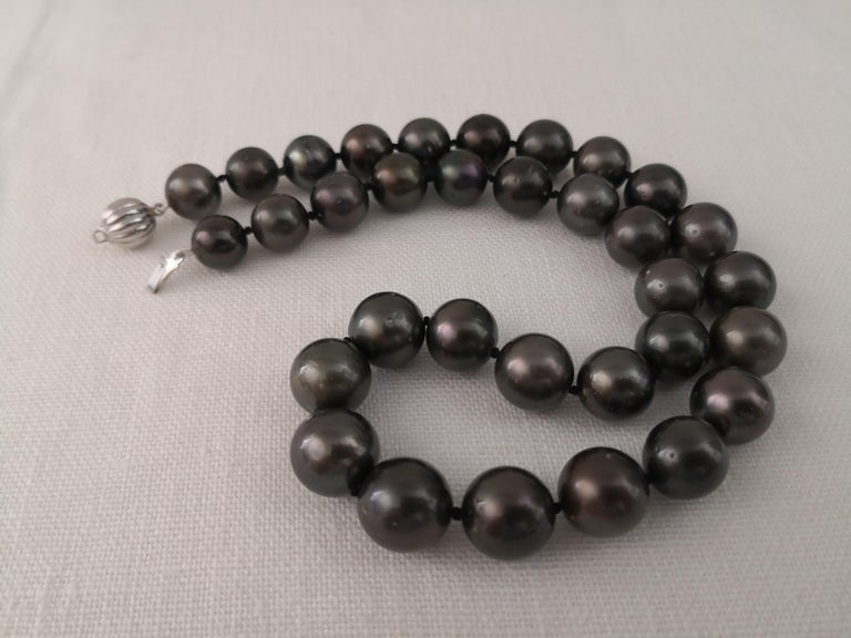 A Tahitian Pearls necklace from Pinctada Magaretifera Oyster and Ocean Waters.  - Origin of Pearls: Tahiti French Polynesia  - Pearls of Natural color   - Natural orient and luster  - Size of pearls 11-13 mm of diameter  - Pearls of Round shape  -