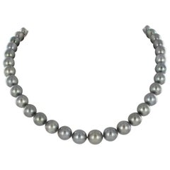 Tahitian Cultured Pearl Necklace with White Gold Clasp