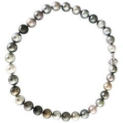 Tahitian Multicolored Gray Pearls with White 18 Karat Gold Adjustable Clasp
