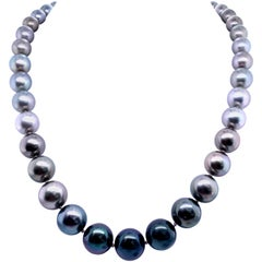 Tahitian Ombre Pearl Necklace 14 Karat White Gold