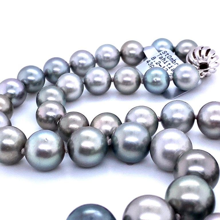 Tahitian Ombre Pearl Necklace 14 Karat White Gold In New Condition For Sale In New York, NY