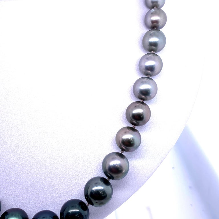Tahitian Ombre Pearl Necklace 14 Karat White Gold For Sale 1