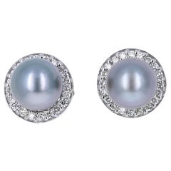Tahitian Pearl and Diamond 14 Karat White Gold Earrings