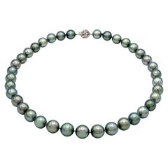 Tahitian Pearl Strand with White Gold and Diamond Clasp