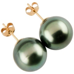 Tahitian Pearl Stud Earrings with Pearls Set in 14 Karat Yellow Gold