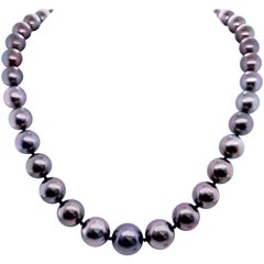 Tahitian Strain Pearl Necklace 14 Karat White Gold