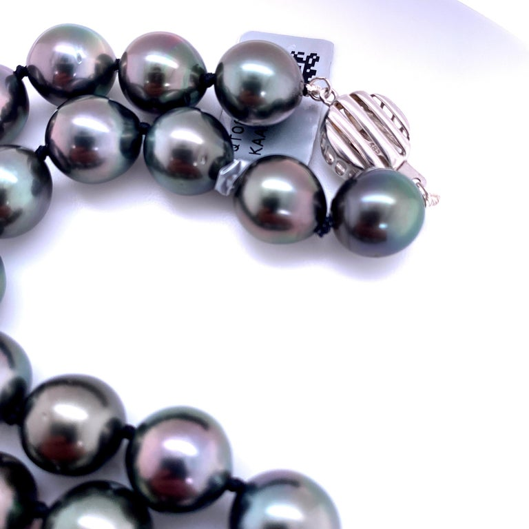 Round Cut Tahitian Strain Pearl Strand Necklace 14 Karat White Gold For Sale