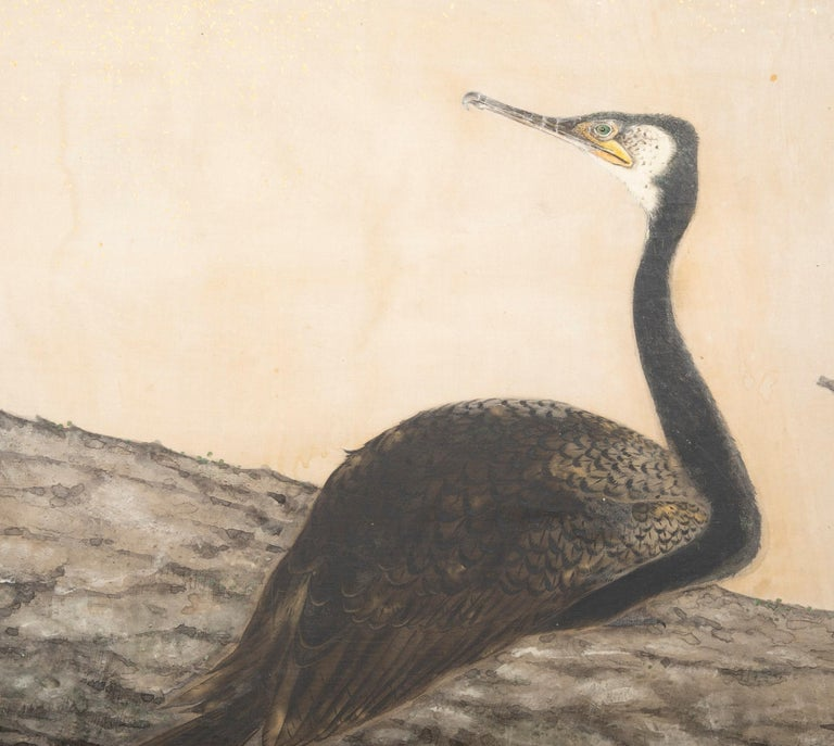 Early 20th Century Taisho Period Painted Silk Screen Depicting Nesting Cormorants by Asami Joujou For Sale